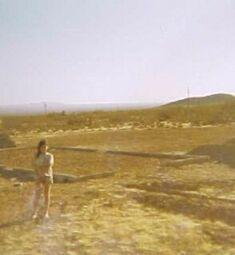 elsa desert